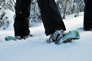 Snowshoes - Image Credit: https://www.flickr.com/photos/kneoh/5508701344